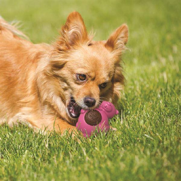 Belly Bites Dog Treats Gigwi