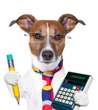 stock-dog-calculating